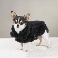 Faux Mink Fur Dog Coat I love this :D