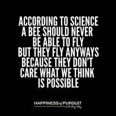 According to aviation science a bee should not be able to fly. Yet they do it anyway despite what we think is possible! - The Bee Movie  #motivation #growthmindset #entrepreneurship . Its not often Ill quote a kids movie nor would I accept it as science but the opening credits to Bee Movie make a pretty good point. . Scientifically they shouldnt be able to fly yet they do! . So many of us are limited by what we tell ourselves we are capable of. Most often its things we have been told…