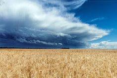 storm front by Daniel Murray on 500px