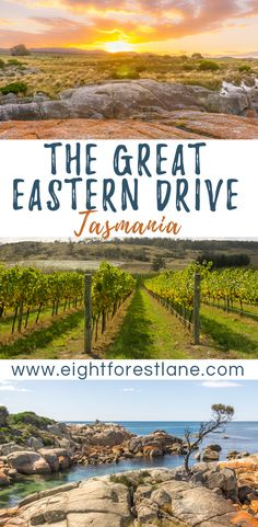 The Great Eastern Drive, Tasmania - Eight Forest Lane Australia Country, Queensland Australia, Australia Travel, Western Australia, Tasmania Road Trip, Tasmania Travel, Road Trip Hacks, Road Trips, East Coast Road Trip