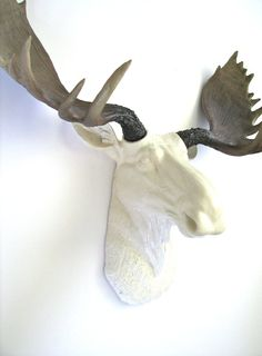 Faux taxidermy moose head wall hanging wall decor home decor max the moose in white faux - Fake moose head mount ...