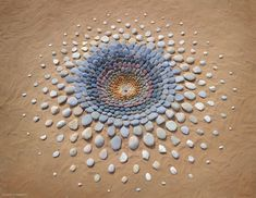 Artist Transforms What He Finds On Beach Into Stunning Works Of Art. -InspireMore