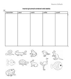 scheda animali Cool Science Experiments, Science Fair Projects, Free Activities, Lesson Plans, Montessori, Fun Facts, Kindergarten, Homeschool, Christian