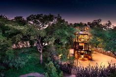10 places to sleep under the stars in Africa From open-air starbeds in Namibia to luxury tree houses in Zimbabwe, we share our 10 recommended places to sleep under the stars in Africa. Luxury Tree Houses, Time And Tide, River Lodge, Private Games, Sleeping Under The Stars, Victoria Falls, Game Reserve, Island Resort, Africa Travel