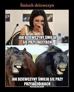 True Memes, Funny Memes, Polish Memes, Zero The Hero, Mish Mash, Really Funny, Cringe, Haha, Funny Pictures