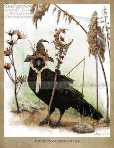 Wicca Raven