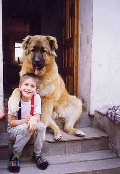A dog and his boy Check more at http://hrenoten.com