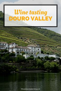 Wine and Port tasting in the Douro Valley, a perfect trip from Porto (Portugal) | Mooistestedentrips.nl