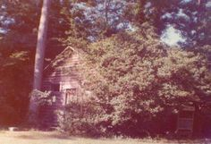 The Forbing Log Cabin Library Built Shreveport Louisiana, The Marketing, Cream Pie, Coconut Cream, Pie Recipes, Country Roads, Cabin, Building, Outdoor