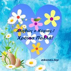 Tweety, Easter, Smile, Easter Activities, Laughing