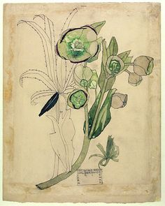 Drawing    Suffolk, England (painted)    1915 (painted)    Mackintosh, Charles Rennie, born 1868 - died 1928      Pencil and watercolour on paper