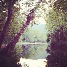 Cowpasture river, Bath County, VA