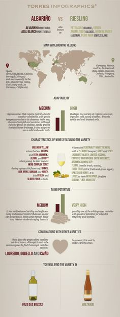 Albariño vs. Riesling: Infographic by 'Club Torres' #wine101 #infographic