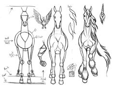 Draw a Horse 3 by Diana-Huang on deviantART