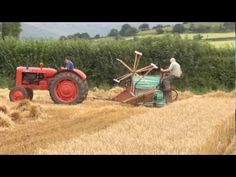 Vintage tractor (ballymurphy club) Reaper binder at work harvesting Oats August 2011 Ireland Antique Tractors, Vintage Tractors, Vintage Farm, Antique Cars, Agricultural Implements, Combine Harvester, Brave, New Farm, Old Farm Equipment