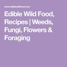 Edible Wild Food, Recipes   Weeds, Fungi, Flowers & Foraging