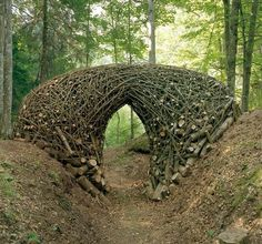 After the Chaos by Bob Verschueren Spruce and ash trees Arte Sella, Malga Costa, Italy, 2010.