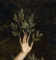 Nature Aesthetic, Forest Fairy, Wow Art, Classical Art, Renaissance Art, Oeuvre D'art, Wall Collage, Aesthetic Pictures, Art Inspo