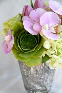 orchid, succulent and hydrangea
