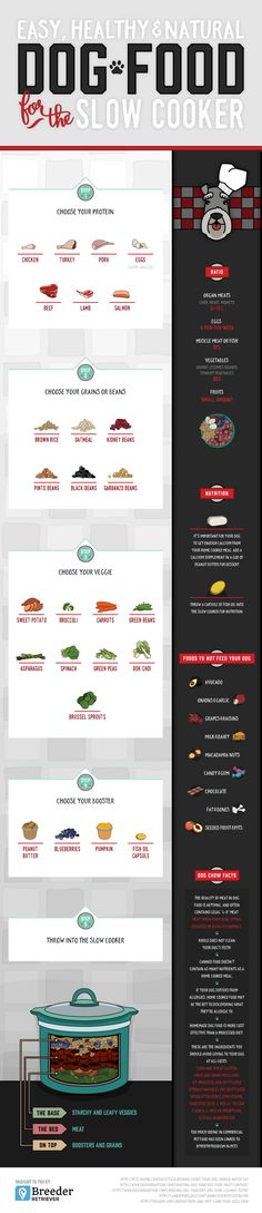 Set Tails Wagging With This Healthy Homemade Dog Food Infographic!                                                                                                                                                     More