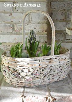 Spring+Basket+Bulb+Garden