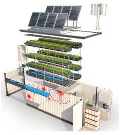 Aquaponics System, Hydroponic Farming, Aquaponics Greenhouse, Urban Farming, Urban Gardening, Organic Gardening, Indoor Gardening, Agriculture Verticale, Aquaponique Diy