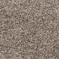 null Spellbound II - Color Latte Texture 12 ft. Carpet