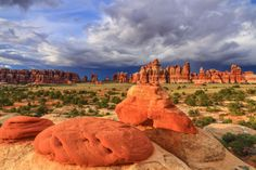The Needles, Canyonlands National Park in Utah by Bryan Moore