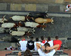 Running of the bulls: The most shocking photographs Pamplona hosts its infamous running of the bulls – part of the annual San Fermin festival – once again  -  July 7, 2017:      Participants run ahead of Cebada Gago's fighting bulls as people watch from balconies