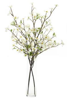 Dogwood Branch, Cream White, Glass Cylinder, 22wx22dx42h WF184