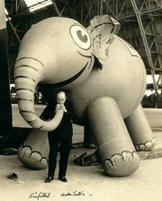 #elephant #balloon #thirties