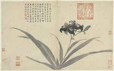 Album of Sketching from Life Shen Zhou (1427-1509), Ming dynasty. 明 沈周 寫生 冊. 沈周的寫意畫風影響後世深遠,〈寫生冊〉正是一重要例證。此冊分別描繪花果、家禽、貓、驢等日常所見之物,計十六開。前副葉篆書題寫「觀物之生」四字,雖無書者款印,但從書風特色觀察,推測是沈周好友李應禎所書。前副葉第一開沈周六十八歲自題云:「我於蠢動兼生植,弄筆還能竊化機;明日小窗孤坐處,春風滿面此心微。戲筆此冊,隨物賦形,聊自適閒居飽食之興。若以畫求我,我則在丹青之外矣。弘治甲寅(一四九四)。沈周題。」