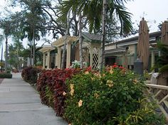 3rd Street South, Naples Florida by JimNaples, via Flickr