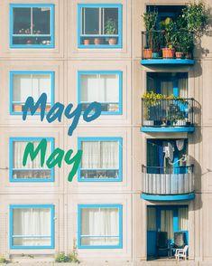 🗓 MAYO   MAY . Fifth month of the year. During may we usually celebrate: . ✨ Labor day on May 1st. . ✨Mother's day 🤰🏼on second Sunday of the month. . . What do you celebrate in May? . ________________ . Mayo es el quinto mes del año. Usualmente nosotros celebramos este mes lo siguiente: . ✨ Día del trabajador el primero de mayo. ✨ Día de las madres el segundo domingo del mes. . ¿Qué celebras normalmente en mayo?👇🏼 . . . ⠀⠀⠀⠀⠀⠀⠀⠀⠀ #may #mayo #monthsoftheyear #mesesdelaño #spanishteacher…