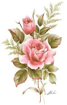Pink Roses (*)