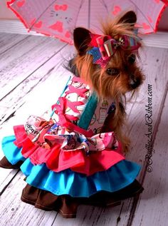 Items similar to Dog Dress / Dog Harness / Dog Clothes / Small Dog Dress / Dog Clothing / Fancy Dog Dress / Dog Outfits / Dog Boutique / Couture Dog Clothes on Etsy Cheap Dog Clothes, Large Dog Clothes, Pet Clothes, Dog Christmas Clothes, Christmas Dog, Small Dog Clothes Patterns, Dog Closet, Dog Boarding Near Me, Led Dog Collar