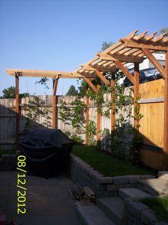 Wisteria arbor my Dad built for me Pergola Garden, Garden Seating, Garden Trellis, Pergola Shade, Backyard Landscaping, Backyard Ideas, Garden Ideas, Pergola Plans, Pergola Kits