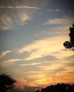 Evening proud world tender life#coffee#adventure#travel#art#sailing#science#nature#explore#photo#hiking#sun#sky#sunset