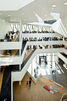 Great stepped gathering space in Viborg Town Hall