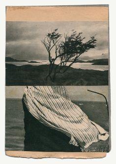 Loin 1 by Katrien De Blauwer