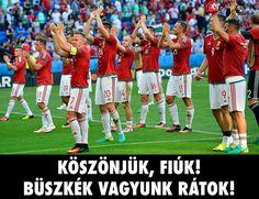 A Magyar Válogatott legszebb pillanatai a EB-n Heart Of Europe, Hungary, 2 In, History, Youtube, Sports, Hs Sports, Sport, Historia
