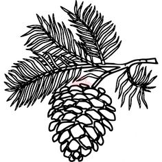 Pine cone art