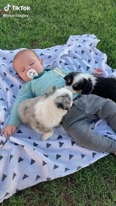 Super Cute Puppies, Cute Baby Dogs, Cute Little Baby, Cute Little Animals, Baby Kind, Cute Funny Animals, Cute Funny Baby Videos, Cute Funny Babies, Cute Animal Videos