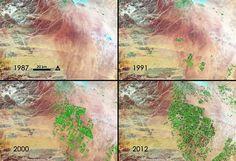 De Agrónomos Por El Mundo  Desarrollo de la agricultura en los últimos 24 años, Desierto de Siria, Arabia Saudita.