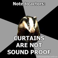 The Backstage Badger