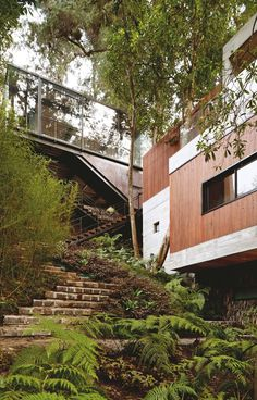The Corallo House by PAZ Arquitectura . Located on a hillside forest area in Guatemala City, the Corallo house integrates the surrounding nature into its layout respecting it and using nature as an architectural intervention.