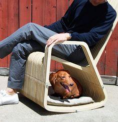 애완동물과 함께 쉴 수 있는 의자 디자인 :: with pet