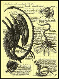 alien_da_vinci.jpg (1197×1600)