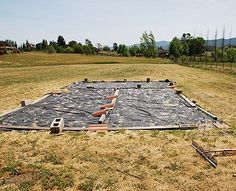 How To Start A Vegetable Garden...great article on starting a garden