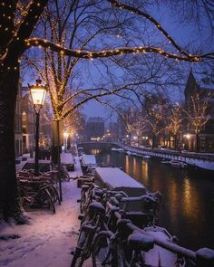 🔥facts about Amsterdam. In of the population in Amsterdam lived off begging. The water in the Amsterdam canals is… Winter Szenen, Winter Christmas, Christmas Time, Christmas Lights, Christmas Scenes, Winter Magic, Simple Christmas, Christmas Cards, Merry Christmas